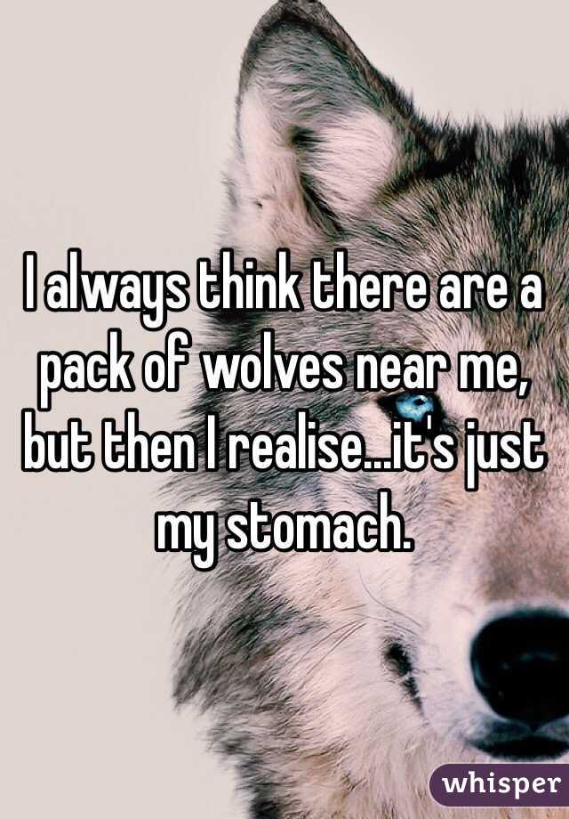 I always think there are a pack of wolves near me, but then I realise...it's just my stomach.