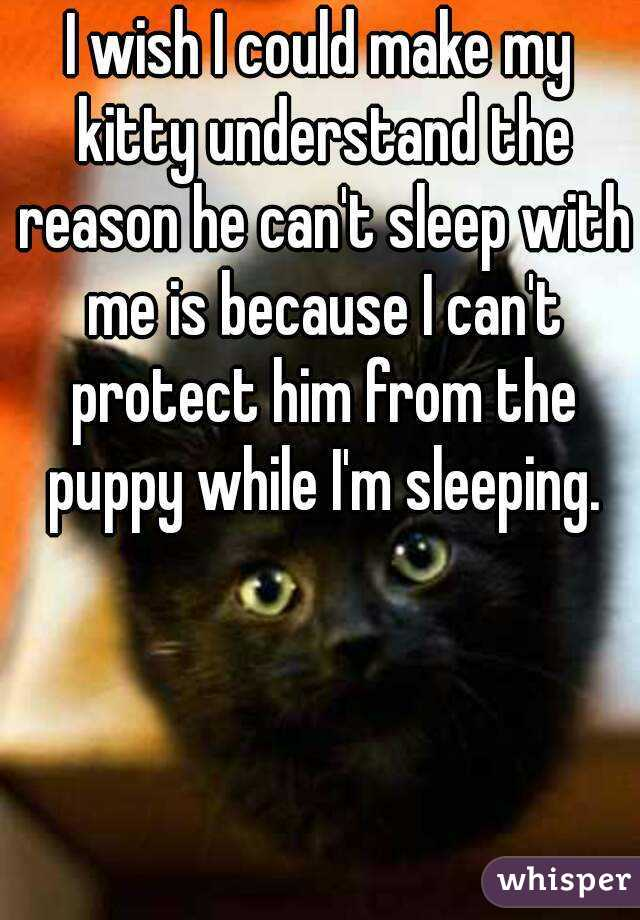 I wish I could make my kitty understand the reason he can't sleep with me is because I can't protect him from the puppy while I'm sleeping.