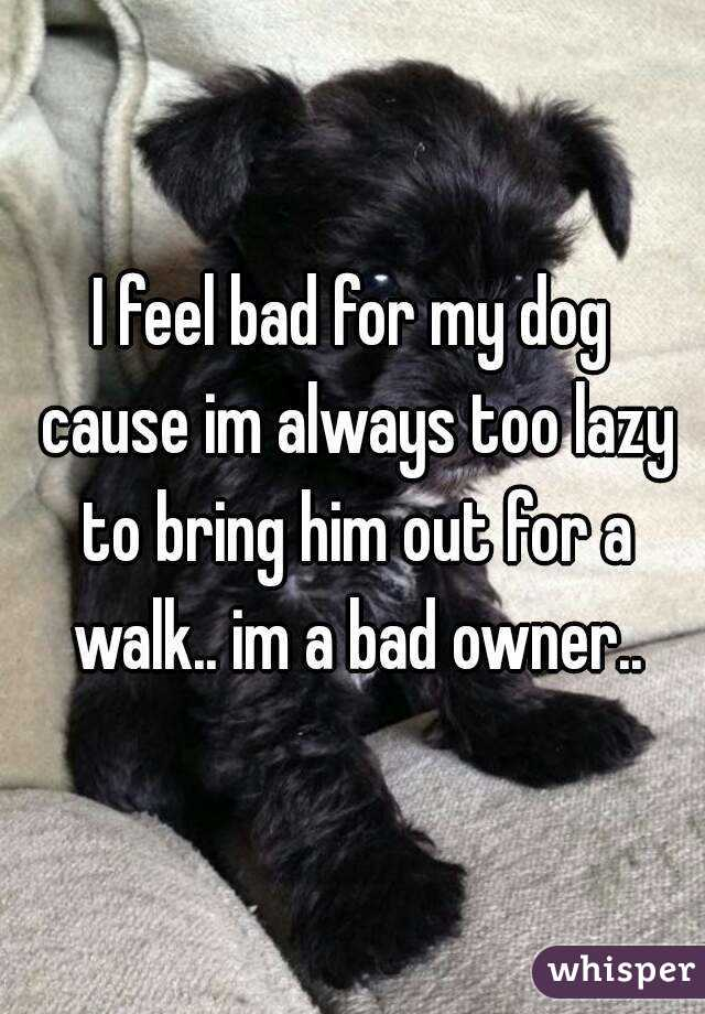I feel bad for my dog cause im always too lazy to bring him out for a walk.. im a bad owner..
