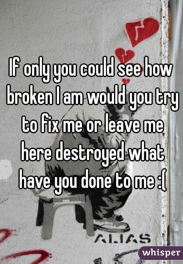 If only you could see how broken I am would you try to fix me or leave me here destroyed what have you done to me :(