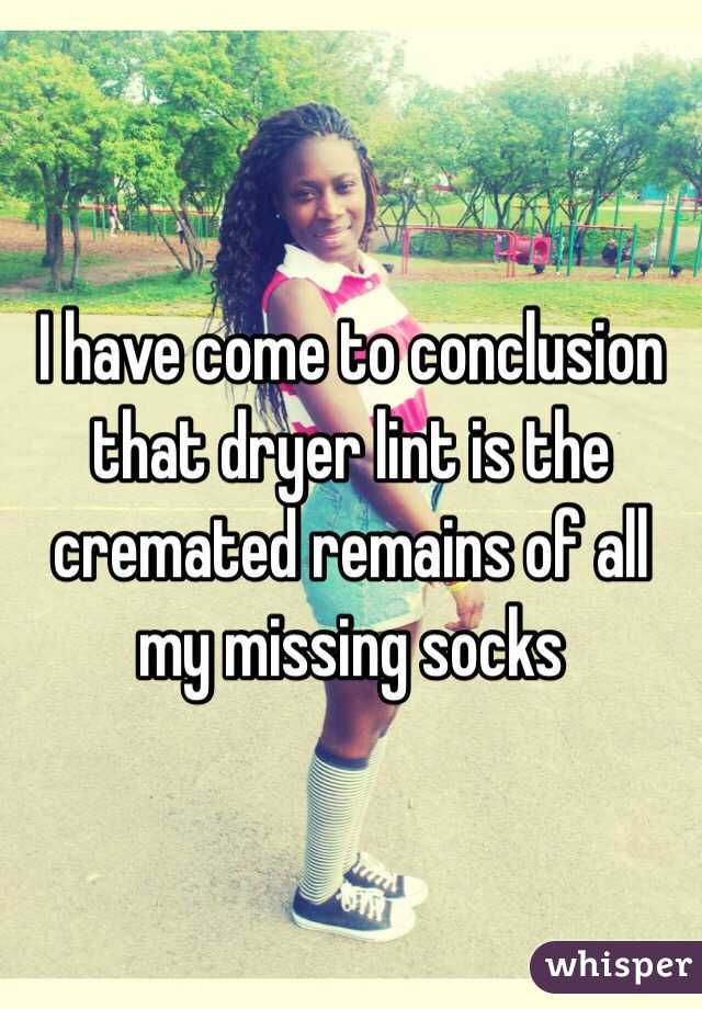 I have come to conclusion that dryer lint is the cremated remains of all my missing socks
