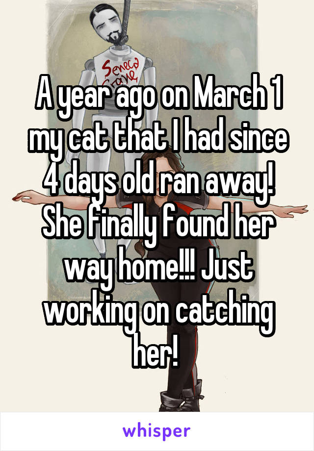 A year ago on March 1 my cat that I had since 4 days old ran away! She finally found her way home!!! Just working on catching her!
