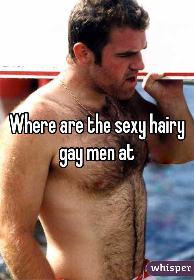 Sexy hairy men gay