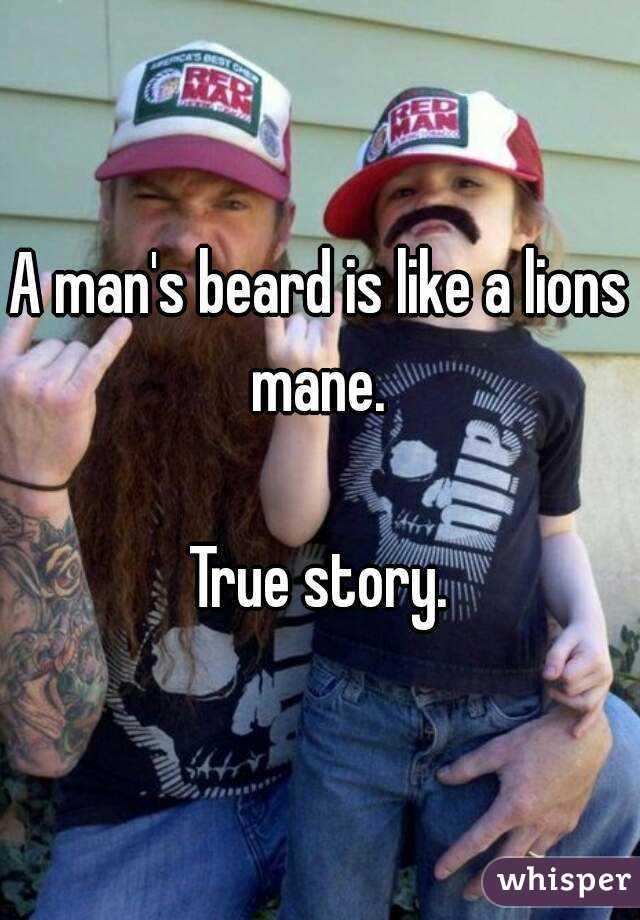 A man's beard is like a lions mane.   True story.