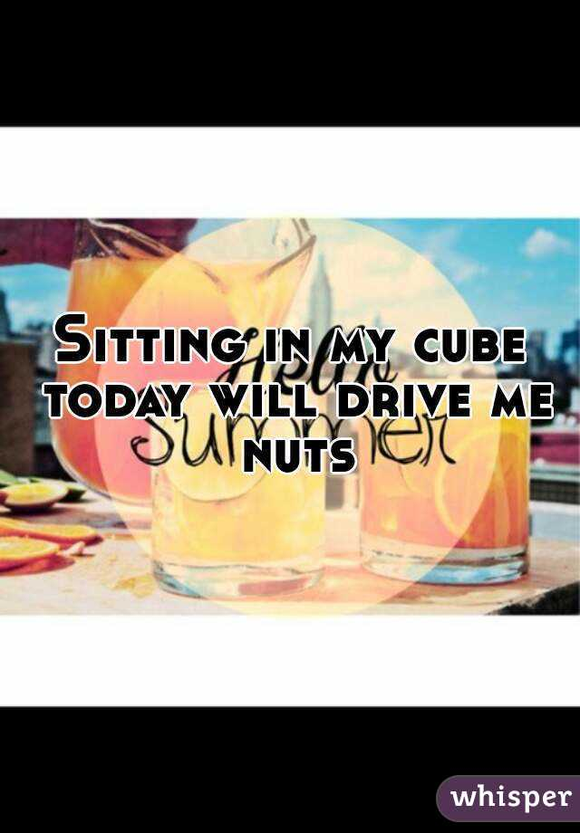 Sitting in my cube today will drive me nuts