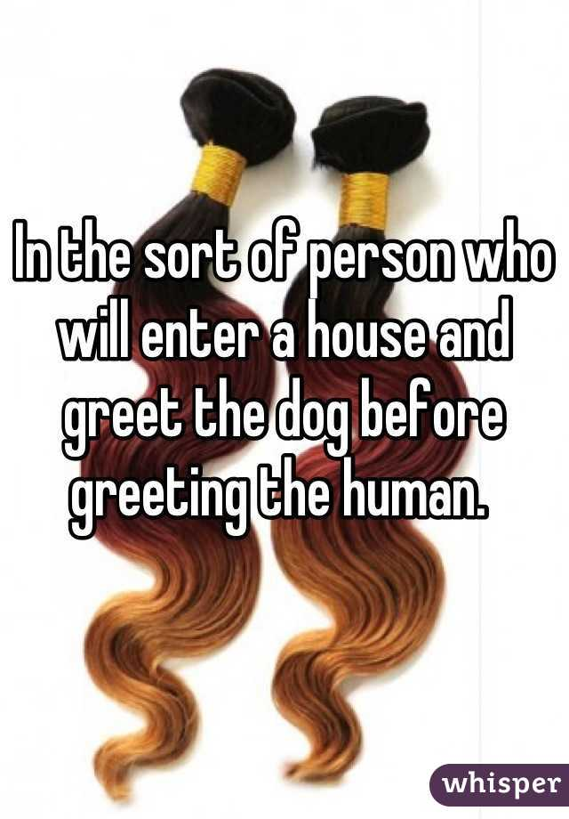 In the sort of person who will enter a house and greet the dog before greeting the human.