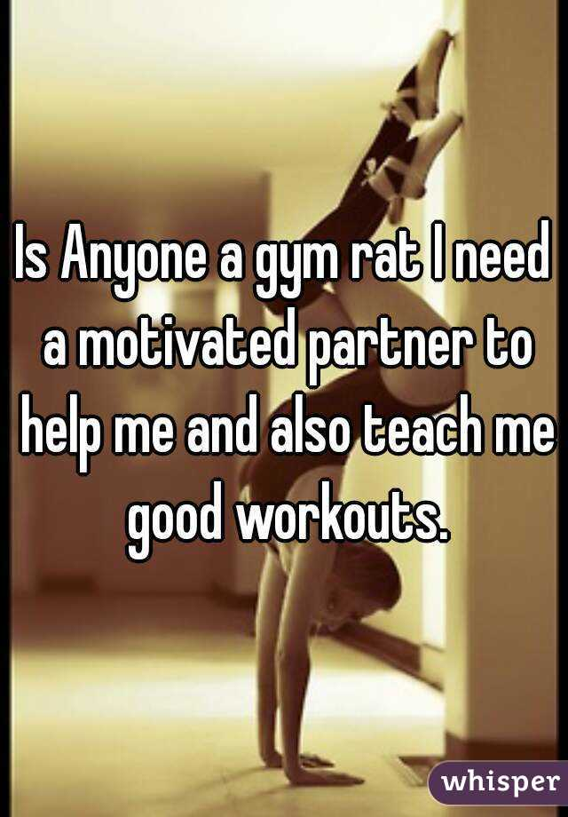 Is Anyone a gym rat I need a motivated partner to help me and also teach me good workouts.