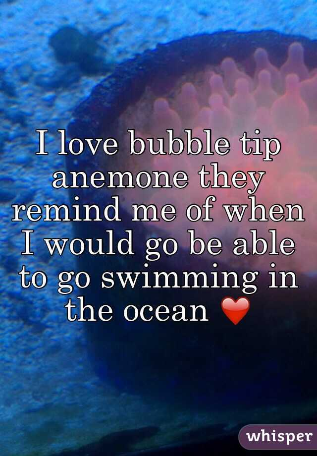I love bubble tip anemone they remind me of when I would go be able to go swimming in the ocean ❤️