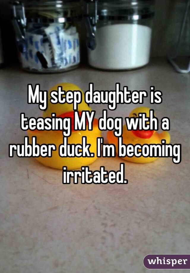 My step daughter is teasing MY dog with a rubber duck. I'm becoming irritated.