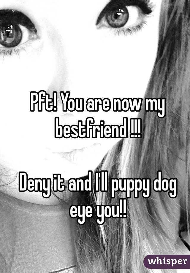 Pft! You are now my bestfriend !!!  Deny it and I'll puppy dog eye you!!