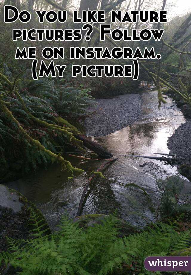 Do you like nature pictures? Follow me on instagram. (My picture)