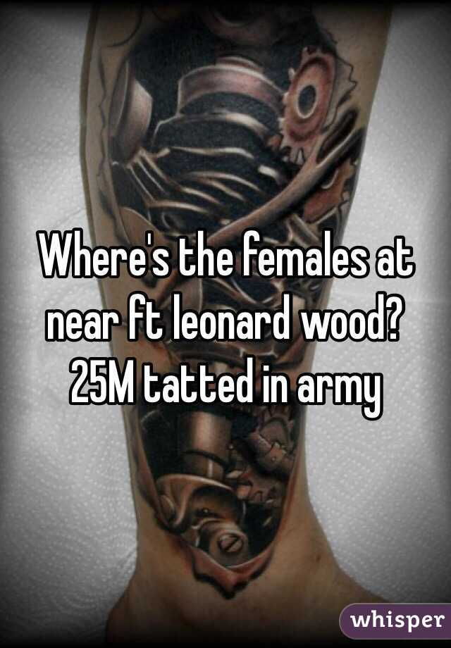 Where's the females at near ft leonard wood?  25M tatted in army