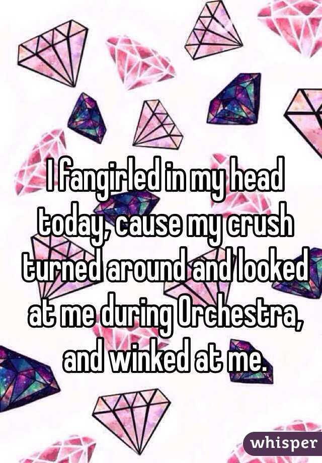 I fangirled in my head today, cause my crush turned around and looked at me during Orchestra, and winked at me.