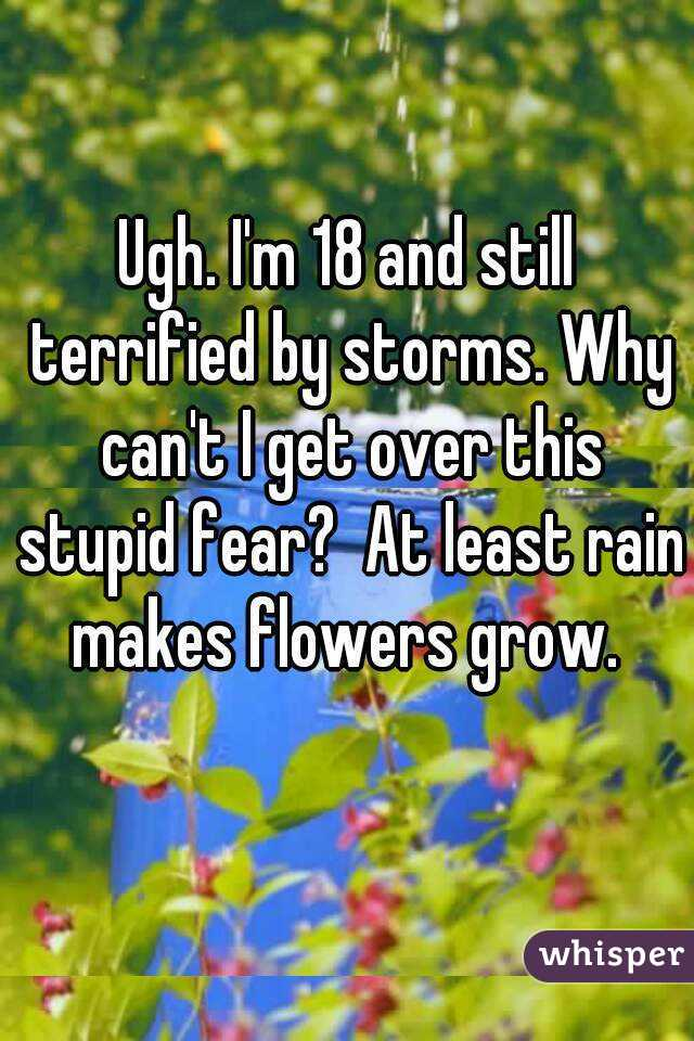 Ugh. I'm 18 and still terrified by storms. Why can't I get over this stupid fear?  At least rain makes flowers grow.