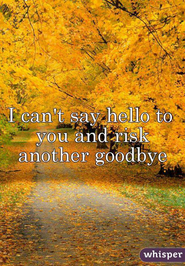 I can't say hello to you and risk another goodbye