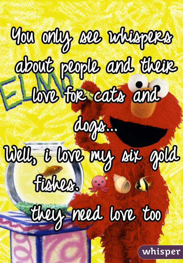 You only see whispers about people and their love for cats and dogs... Well, i love my six gold fishes. 🐙🐚🐠 they need love too