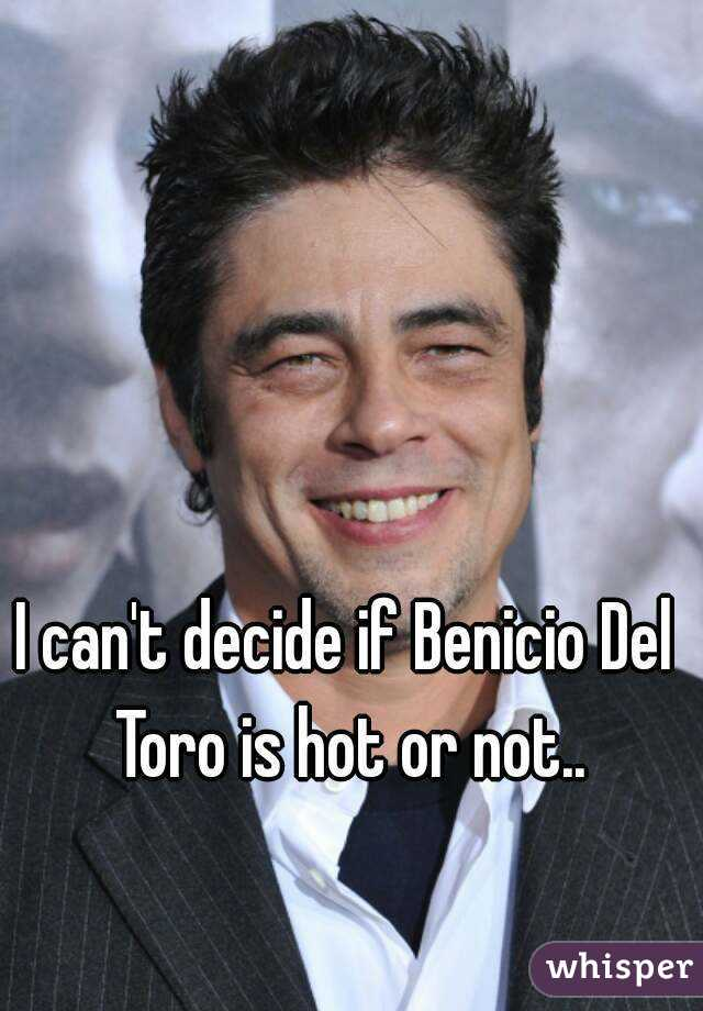 I can't decide if Benicio Del Toro is hot or not..