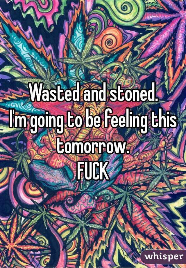 Wasted and stoned.  I'm going to be feeling this tomorrow.  FUCK