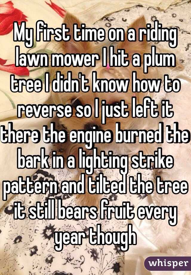 My first time on a riding lawn mower I hit a plum tree I didn't know how to reverse so I just left it there the engine burned the bark in a lighting strike pattern and tilted the tree it still bears fruit every year though