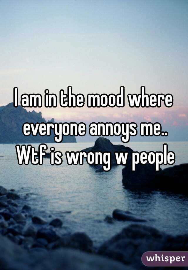 I am in the mood where everyone annoys me.. Wtf is wrong w people