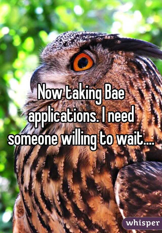 Now taking Bae applications. I need someone willing to wait....