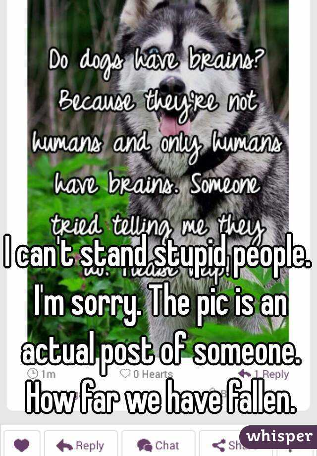 I can't stand stupid people. I'm sorry. The pic is an actual post of someone. How far we have fallen.