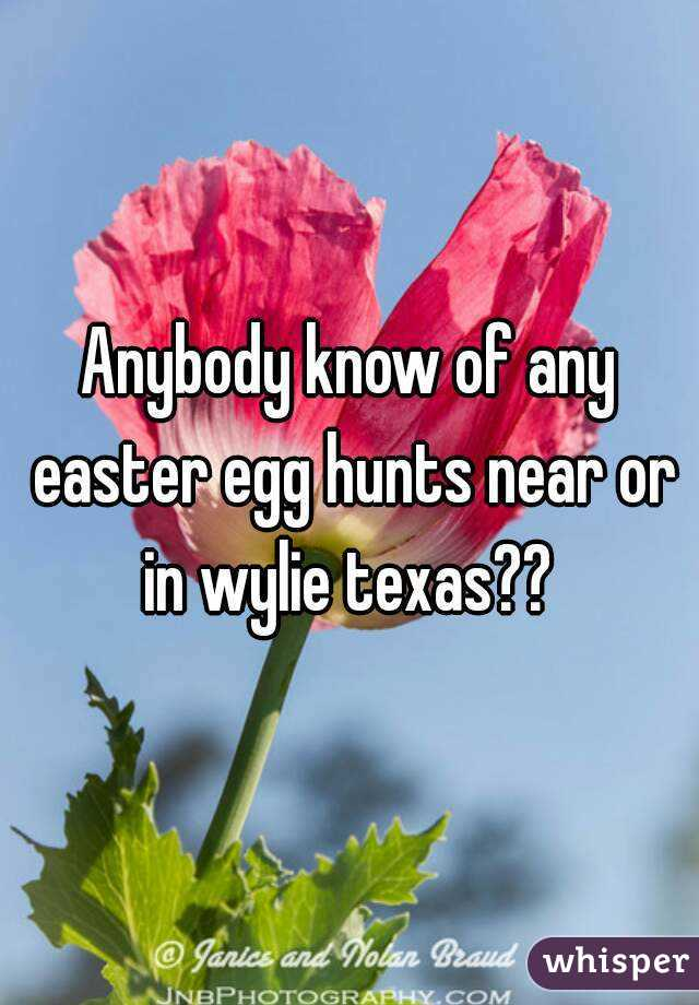 Anybody know of any easter egg hunts near or in wylie texas??