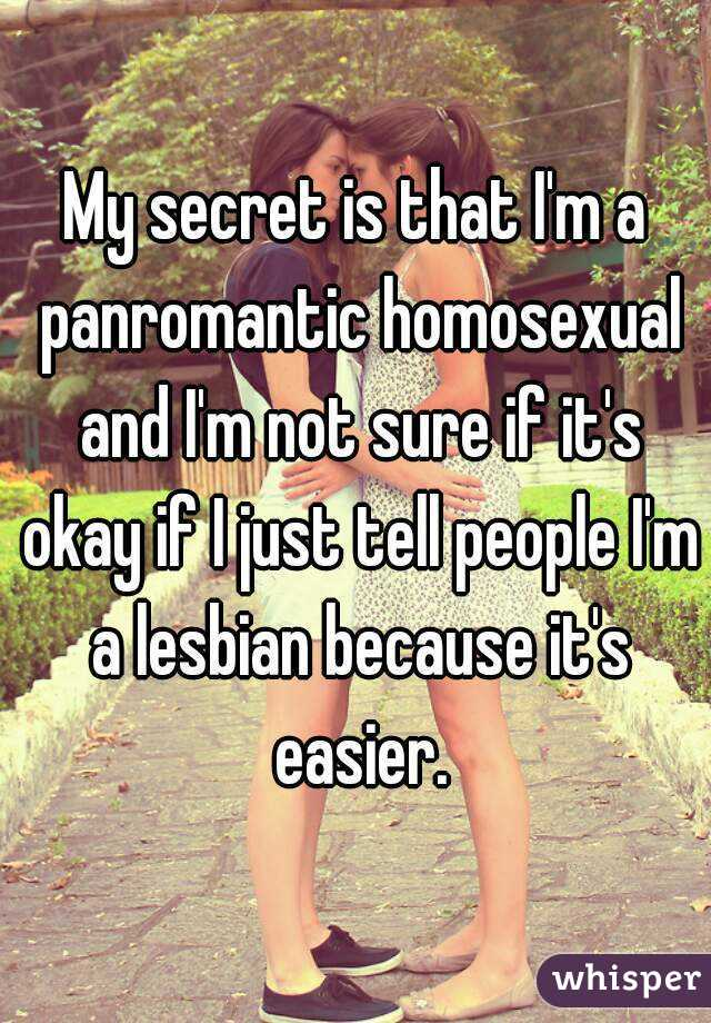 My secret is that I'm a panromantic homosexual and I'm not sure if it's okay if I just tell people I'm a lesbian because it's easier.
