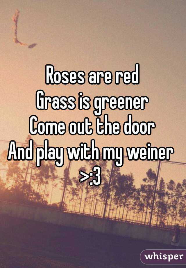 Roses Are Red Grass Is Greener Come Out The Door And Play With My Weiner 3