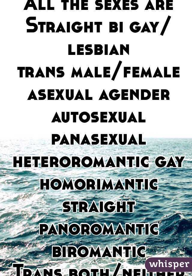 Are heteroromantic asexuals straight