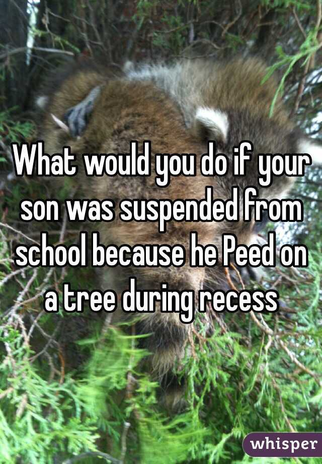 What would you do if your son was suspended from school because he Peed on a tree during recess