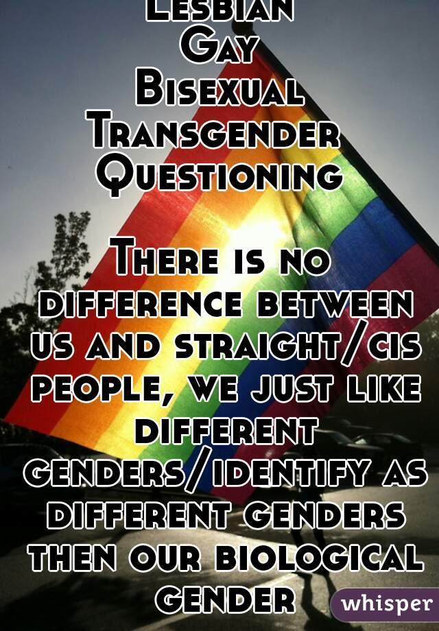 Difference between gay lesbian and bisexual