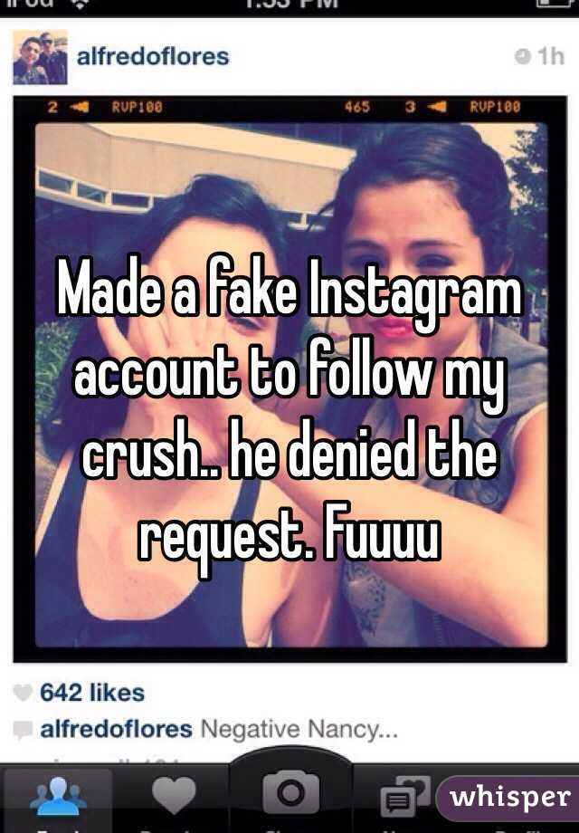 Made a fake Instagram account to follow my crush   he denied