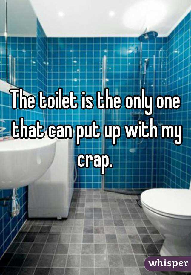 The toilet is the only one that can put up with my crap.