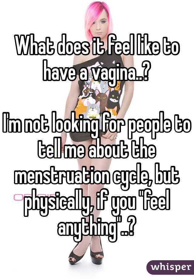 What does a vajina feel like