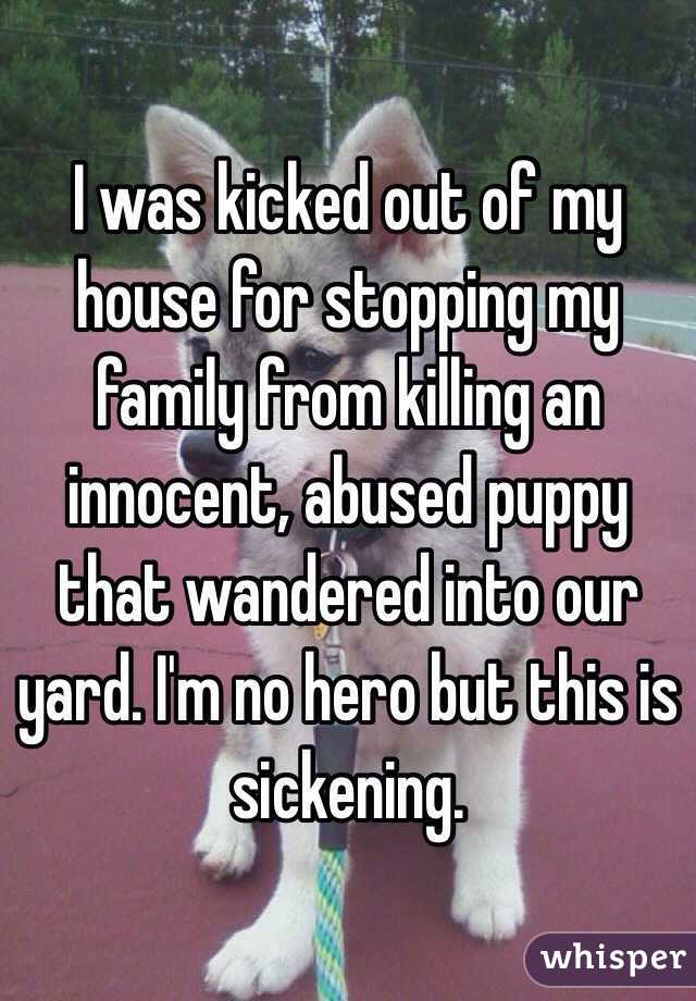 I was kicked out of my house for stopping my family from killing an innocent, abused puppy that wandered into our yard. I'm no hero but this is sickening.