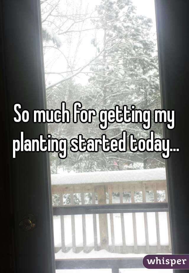 So much for getting my planting started today...
