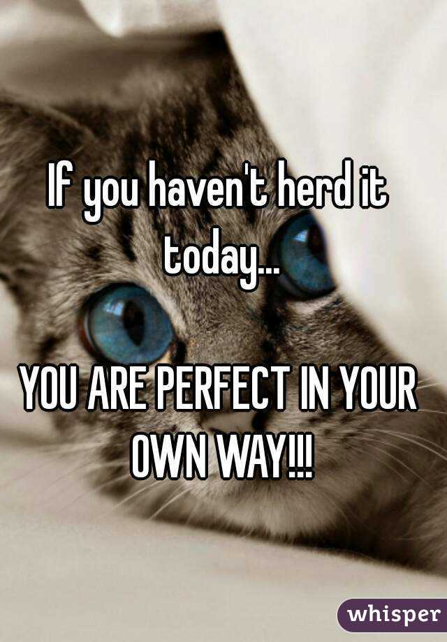 If you haven't herd it today...  YOU ARE PERFECT IN YOUR OWN WAY!!!