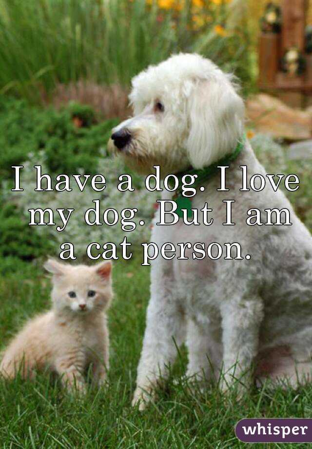 I have a dog. I love my dog. But I am a cat person.