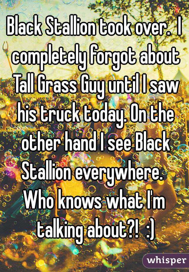 Black Stallion took over.  I completely forgot about Tall Grass Guy until I saw his truck today. On the other hand I see Black Stallion everywhere.   Who knows what I'm talking about?!  :)