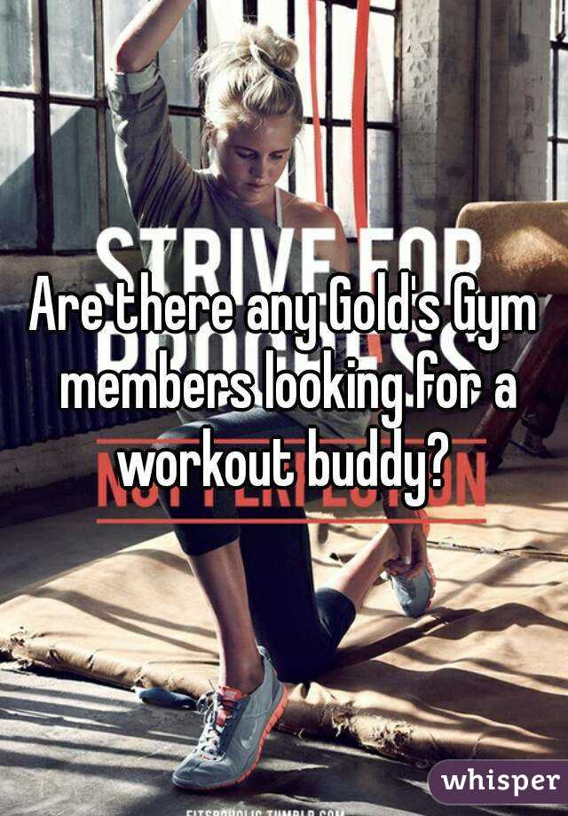 Are there any Gold's Gym members looking for a workout buddy?