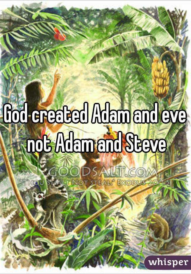 God created Adam and eve not Adam and Steve