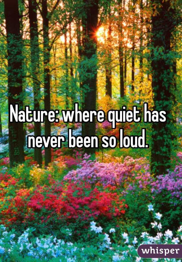 Nature: where quiet has never been so loud.