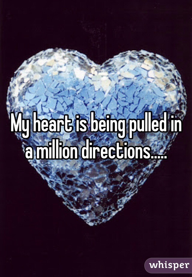 My heart is being pulled in a million directions.....