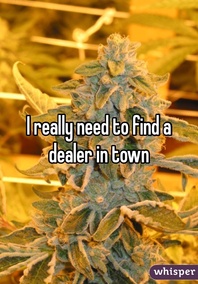 I really need to find a dealer in town