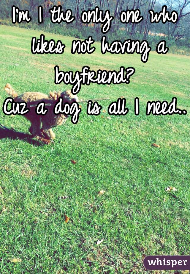 I'm I the only one who likes not having a boyfriend?  Cuz a dog is all I need..