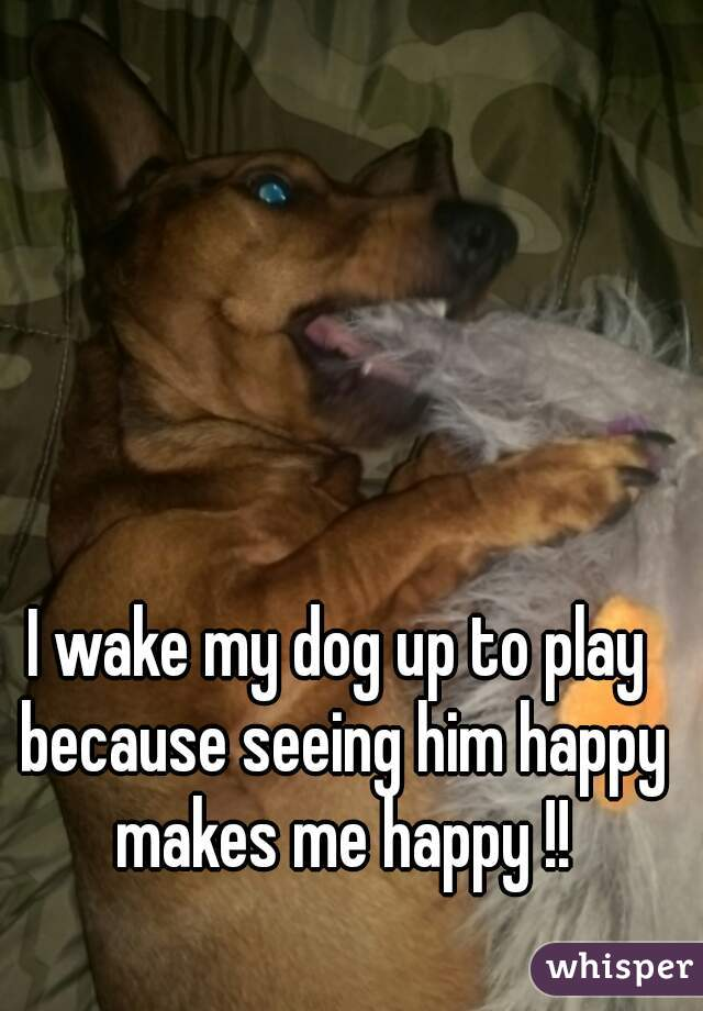 I wake my dog up to play because seeing him happy makes me happy !!