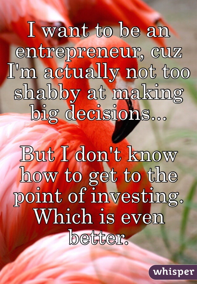 I want to be an entrepreneur, cuz I'm actually not too shabby at making big decisions...  But I don't know how to get to the point of investing. Which is even better.