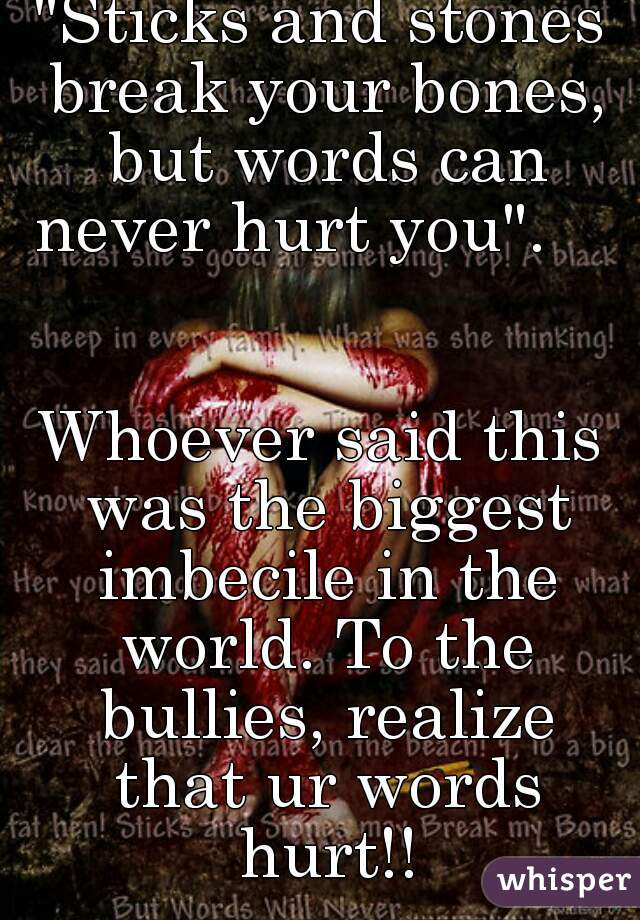 """""""Sticks and stones break your bones, but words can never hurt you"""".       Whoever said this was the biggest imbecile in the world. To the bullies, realize that ur words hurt!!"""