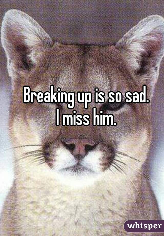Breaking up is so sad. I miss him.